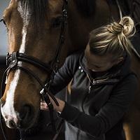 Uma aula de iniciação à equitação