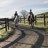 Iniciação à Equitação