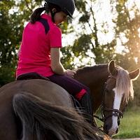 Aula de equitação com visita à Coudelaria!