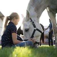 Batismo a cavalo com visita à Quinta Pedagógica!